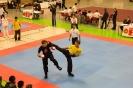 Westdeutsche Wushu Meisterschaft 2013 in Wesel_1