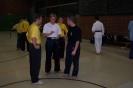 02-Spezialtraining mit dem Taekwondo Bundes- und Olympiatrainer Georg Streif