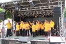 Vorführung auf dem Repelener Dorffest 2013_23